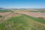 TBD Duffield Flat Rd - Photo 6