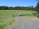 TBD Kirkwood Creek Road - Photo 3