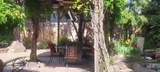 3811 Suntree - Photo 5