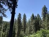 1064 Tolo Trail - Photo 3