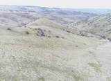 Seven Summits Hunting Ranch - Photo 16