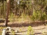 TBD Big Creek Road - Photo 12