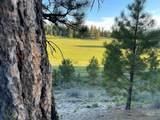 ±320 acres - Big Creek Meadows Ranch - Photo 12