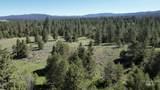 ±320 acres - Big Creek Meadows Ranch - Photo 7