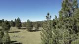 ±320 acres - Big Creek Meadows Ranch - Photo 9