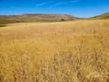 TBD - 320 acres Big Flat Rd - Photo 10