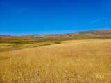 TBD - 320 acres Big Flat Rd - Photo 11