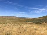 TBD - 320 acres Big Flat Rd - Photo 19