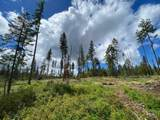 Parcel 2 Black Bear Bend - Photo 1