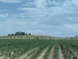 7865 Via Toscana Ln - Photo 9