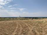 7865 Via Toscana Ln - Photo 22