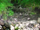 723 Deer Gulch Road - Photo 26