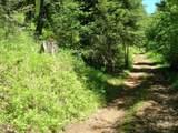 723 Deer Gulch Road - Photo 35