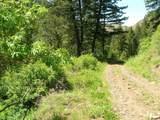 723 Deer Gulch Road - Photo 43
