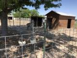 8514 Track Rd - Photo 48