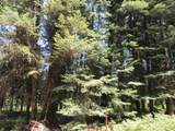 43161 Mountain Drive - Photo 37