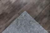 11623 Mountain Iris St - Photo 10