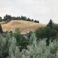 600 Boise Hills Drive - Photo 15