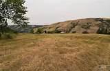 13497 Bull Pine Road - Photo 15
