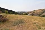 13497 Bull Pine Road - Photo 28