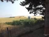 14489 Tarbet Road - Photo 41
