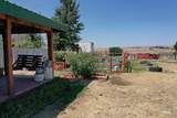 10312 Canale Ln - Photo 8