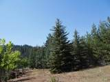 Lots 5-19 Mores Creek Heights - Photo 42
