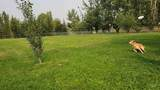 2042 16th Ave - Photo 42