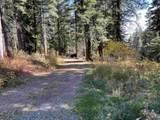 1523 Bear Rock Trail - Photo 13