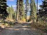 1523 Bear Rock Trail - Photo 19