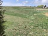 TBD Willis Road (8.75, 2 Lots) - Photo 1