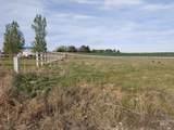 9896 Wild Prairie Way - Photo 6
