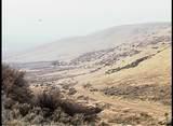 Seven Summits Hunting Ranch - Photo 11