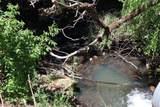 409 Suttler Creek Road - Photo 37