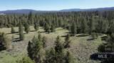 ±320 acres - Big Creek Meadows Ranch - Photo 6