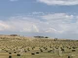 7865 Via Toscana Ln - Photo 4