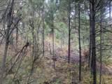 Lot 4 Plateau Ct. - Photo 7