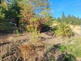 138 Wild Plum Lane - Photo 34