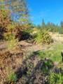 138 Wild Plum Lane - Photo 44