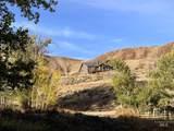 1184 Garden Creek Road - Photo 33