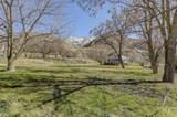 144 Cow Creek Rd - Photo 42