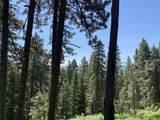 1064 Tolo Trail - Photo 30
