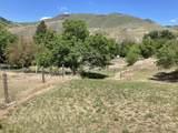 144 Cow Creek Rd - Photo 44