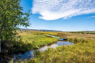 Florence Springs, Oreana, ID 83650 (MLS #98631177) :: Boise River Realty
