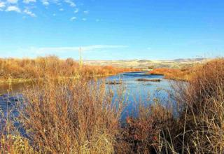 2054 Cove Rd, Weiser, ID 83672 (MLS #98641818) :: Boise River Realty