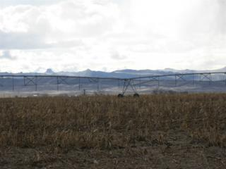 TBD 40ac Southside Rd, Homedale, ID 83628 (MLS #98647456) :: Boise River Realty