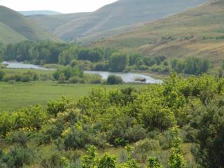 TBD Goodrich Road, Council, ID 83612 (MLS #98652969) :: Boise River Realty