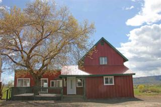 2130 Hwy 95, Council, ID 83612 (MLS #98653339) :: Boise River Realty