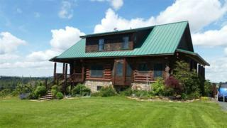 1713 Texas Ridge Road, Deary, ID 83823 (MLS #98653344) :: Boise River Realty