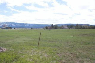 2370 Nisula Road, Mccall, ID 83638 (MLS #98656604) :: Boise River Realty